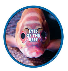 eyes of the reef