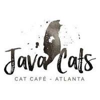 java+cats.jpg