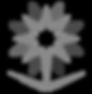 tvtc-logo_edited_edited.png