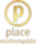Place Woolloongabba Logo V Gold.png