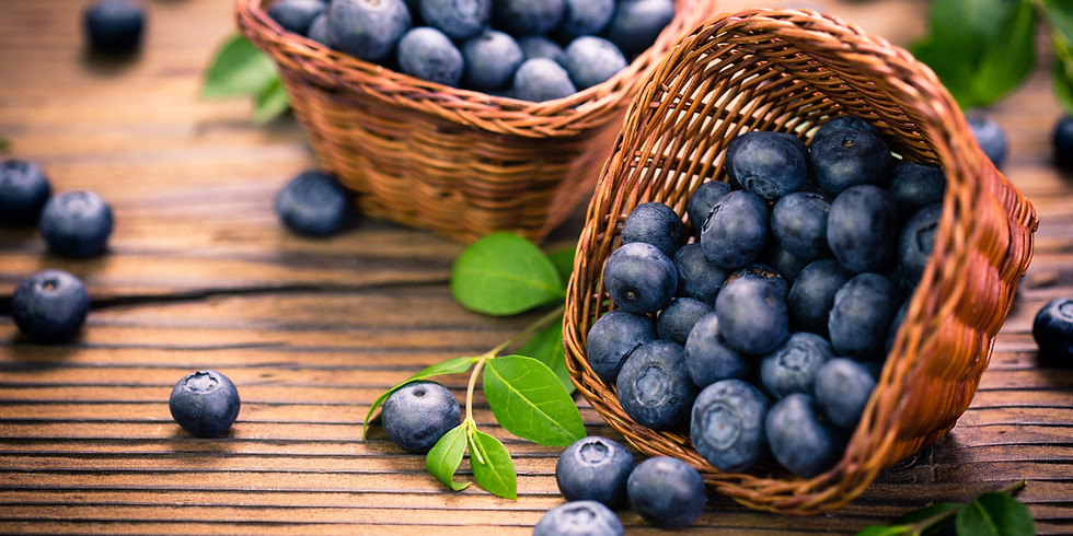 Blueberries in the Park