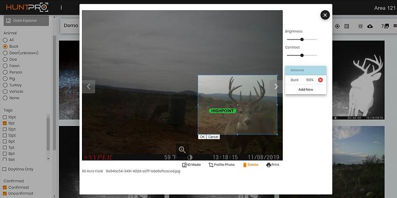 buck id screencap.png