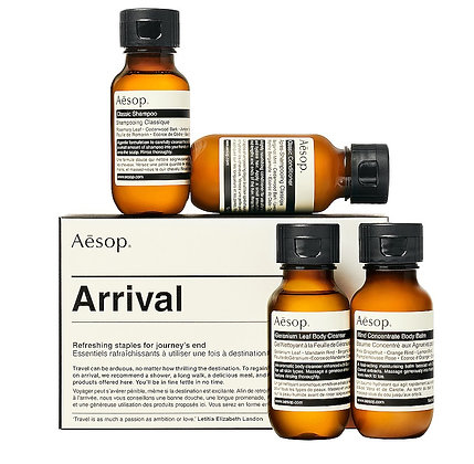 Arriving in Style by Aesop