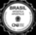 logo_apostille_edited.png