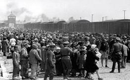 Dr. Josef Mengele Ve Öjeni Politikası