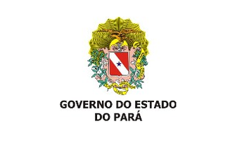 cliente_governo-pa.png