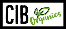 DJ-Josie-Rock-CIB-Organics-Square-CBD-Logo-Atlanta-DJ-Female-DJ-Celebrity-DJ-Disk-Jockey-E