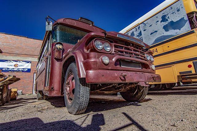 1959 Dodge D500 Bus - Front