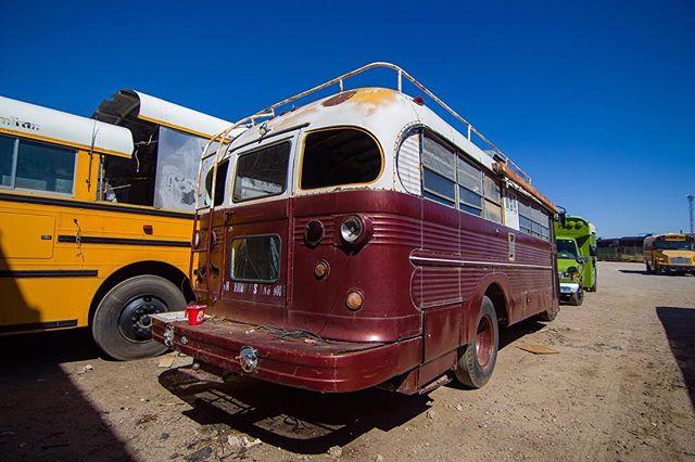 1959 Dodge D500 Bus - Rear