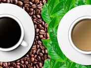 Café/ Té