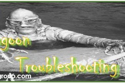 Wastewater Lagoon Part III: Troubleshooting