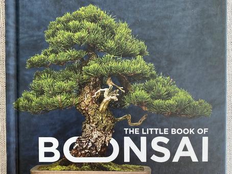 "4 Takeaways from Jonas Dupuich's ""The Little Book of Bonsai"""