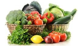 Dieta de eliminação integral