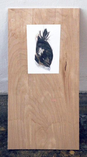 """Sparrow (after Chardin), 2012  Gesso on found board 18 x 9"""" $900"""