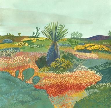 "Ariel Lee Baby Yucca Tree Gouache on Lenox paper, 2019 11.5""x11.5"" SOLD"