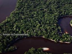 Amazônia entre o local e global: um olhar de um amazônida no combate à necropolítica