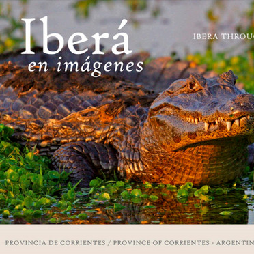 Libro Iberá en imágenes