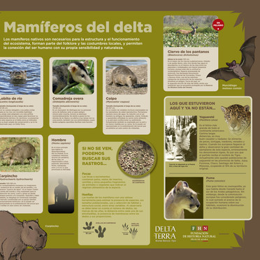 Centro de Visitantes Reserva Delta Terra