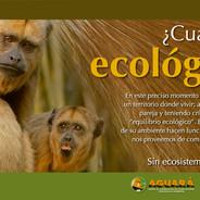 Sistema visual Centro de Fauna Aguará, Corrientes