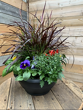 MIXED AUTUMN PLANTER