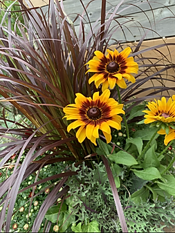 OUTDOOR FALL PLANTER