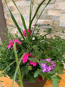 SUMMER FLOWERING PLANTER.jpeg