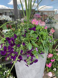 LRGE FLOWERING SUMMER PLANTER.jpeg