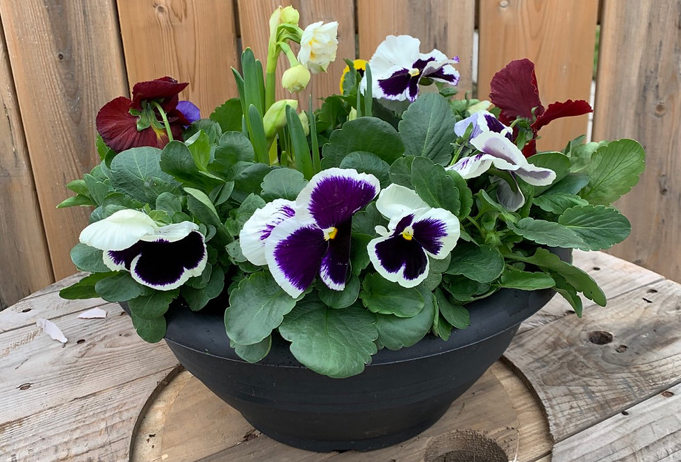 """12"""" SPRING BOWL WITH BULB CENTER"""