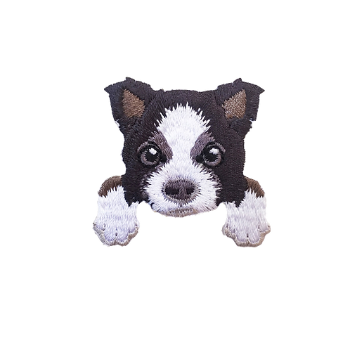 Border Collie Dog Patch