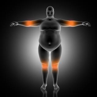 Universidad CME - Nutrición y Obesidad