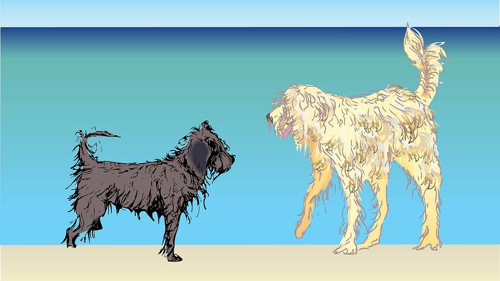 Unframed art print - shaggy dogs