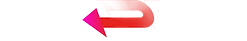 SKRRT-BACK-WEB.png