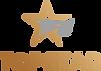 Topstar Logo (1).png