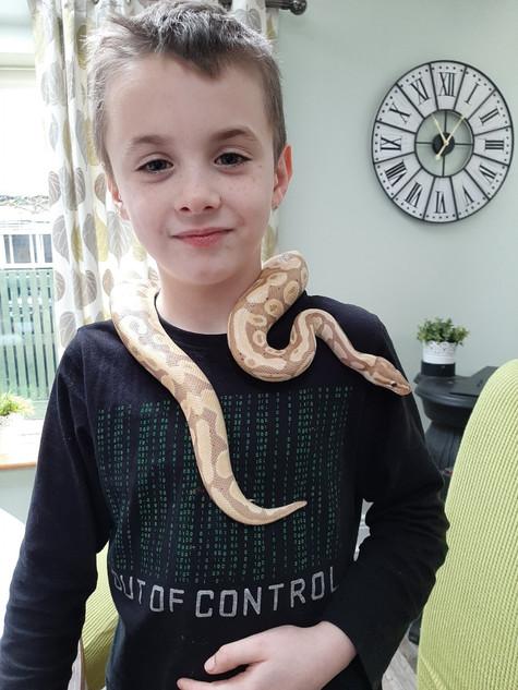 AR Snake.jpg