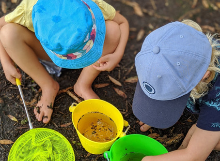 Week 1 + 2 - Exploring mud, nature names, respect and hazard awareness