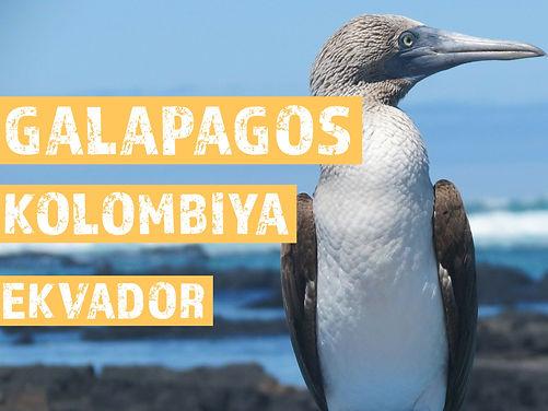Galapagos Ekvador Kolombiya Turları
