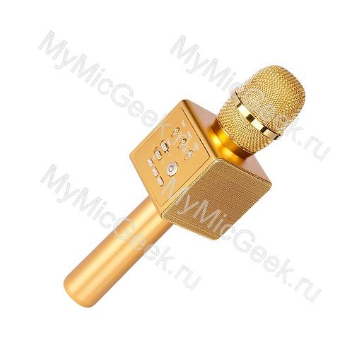 MicGeek i6 Золото (мощность 10Вт) Стерео звук