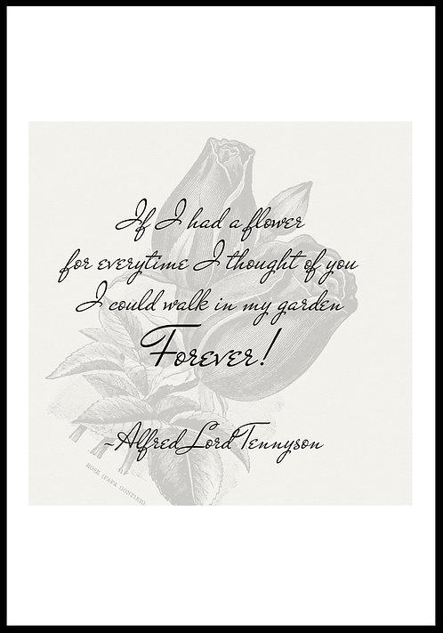 If I had a flower.. citatplakat
