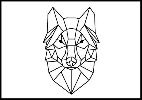 Ulv geometrisk