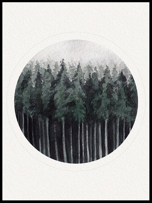 Akvarel skov billede 1