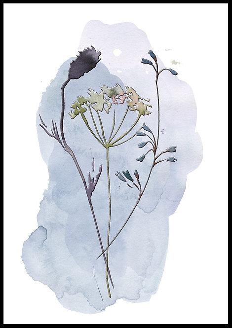 Akvarel blomster 1