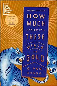 Nothing Gold Can Stay:  Race and the American Dream in HOW MUCH OF THESE HILLS IS GOLD