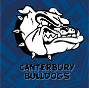 NSW-STATE-CUP-CANTERBURY-BACKING.jpg