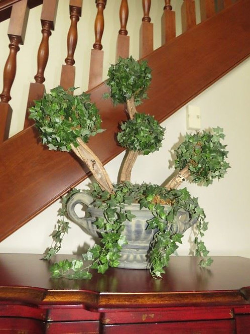Bonsai Topiary in Heavy Pot