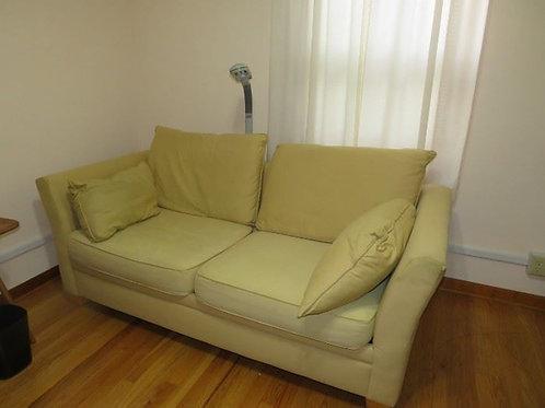 Loveseat sofa Double sleeper, shows average wear