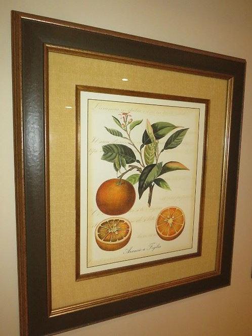"Bay Design Orange Print 33"" X 29"""
