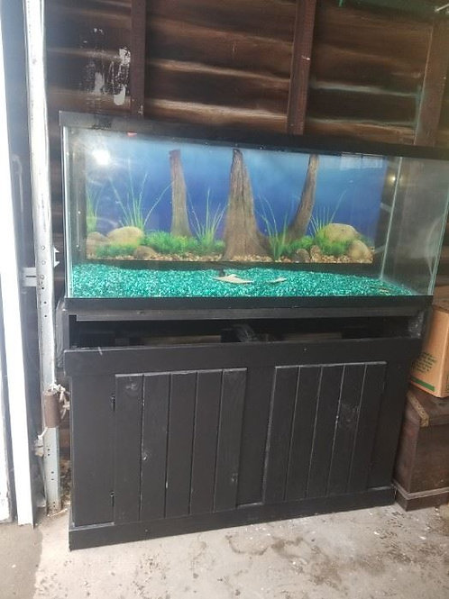 Large Fish tank and base vg condition