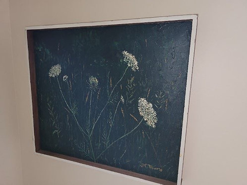 """Queen Anne's Lace on Black 