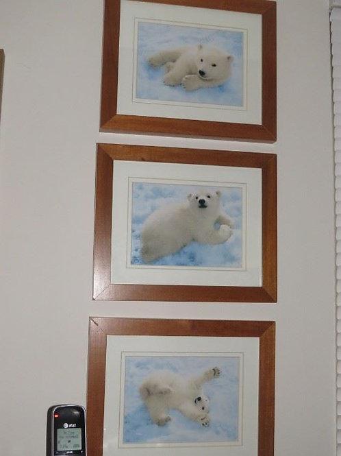 Set of 3 Kennan Ward Polar Bear Cubs