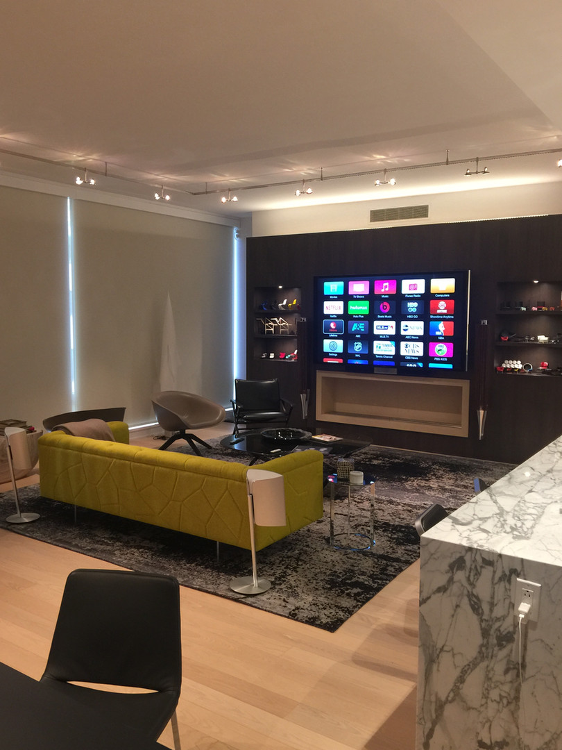 B&O Home Theater X Lutron